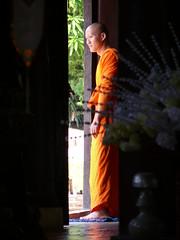 Chiang Mai Monastery (henrichgunter) Tags: orange reisen asien monastery chiangmai kloster mnche