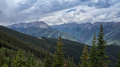 Aspen Sony RX1R-00955.jpg (Hale Yeah) Tags: nature sony sharpness aspencolorado zeiss20 sonyrx1r