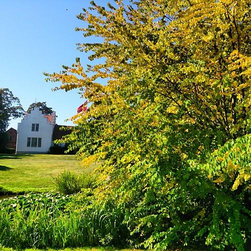 Härliga sensommar i tonerna av gult från parken och köksträdgården!