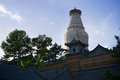 Giant buddhist stupa, Wutai Shan, Shanxi, China (Alex_Saurel) Tags: wood architecture asian asia stupa buddhist traditional religion culture monastery asie  monastere chine 50mmf14    zhongguo