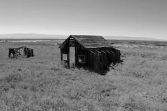 Drawbridge enter (Bart D. Frescura) Tags: california bw abandoned northerncalifornia scary haunted ghosttown drawbridge eastbay ghostly westcoast fremontcalifornia creepsville drawbridgecalifornia