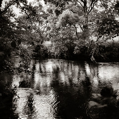 2013-09 Cluden River (chapelcross10) Tags: bw mamiya tlr monochrome scotland 150 mf rodinal toned fomapan100 65mm c330 sekor