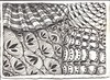 Fabric and Lace (molossus, who says Life Imitates Doodles) Tags: zia zentangle zendoodle zentangleinspiredart