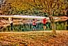 Fuerza y Dedicación - Strength and Dedication (*atrium09) Tags: barcelona españa naturaleza color tree nature water colors sport arbol agua pantano swamp deporte rowing hdr remo fuerza dedicación atrium09 rubenseabra joanot clubremobarcelona rowingclubbarcelona