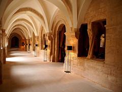 Vino y restauracin (Jesus_l) Tags: espaa europa valladolid sardndeduero jesusl monasteriosantamaraderetuerta bodegaabadaretuerta