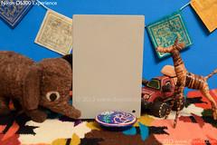 Nikon D5300 ISO - Digital WB Grey Card for Reference (dojoklo) Tags: camera color book nikon iso tricks howto tips use setup guide manual dslr noise ebook learn beginner highiso intermediate quickstart digitalnoise d5300 setupguide recommendedsetting nikond5300