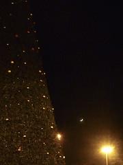 l'albero, la luna e il lampione. (tremmysan ) Tags: moon streetlamp christmastree luna lampione alberodinatale compattinasempreconme