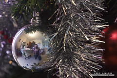 Christmas Bauble Portrait (DMeadows) Tags: christmas xmas red portrait selfportrait tree pine silver photographer distorted decoration tinsel needles bauble spruce selfie davidmeadows dmeadows davidameadows dameadows