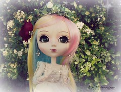 Garden magic (Wolkywii) Tags: flowers garden madison pullip blanche magical obitsu