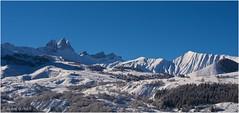 Entre Aiguilles et Mont Falcon un lendemain de neige