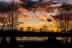 Dusk Sunset  021714 IMG_4798 (Orkakorak) Tags: winter dusk favescontestwinner herowinner ultraherowinner