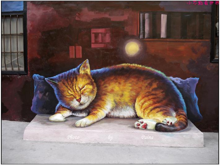 雲林虎尾屋頂上的貓 (29).JPG