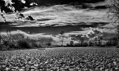#7897 (UBU ♛) Tags: blackwhite noiretblanc blues dreams biancoenero blupolvere ©ubu blutristezza unamusicaintesta landscapeinblues bluubu luciombreepiccolicristalli