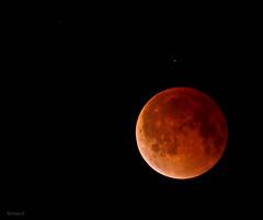 Bajo la misma luna / Under the same moon (nan_ita) Tags: moon eclipse originalphotography photographersontumblr