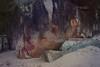 Rock Texture 2 (everyday sh⊙_☉ter) Tags: park beach forest sydney waterfalls kookaburra wattamolla garie royalnationalpark audley stanwell hackerriver