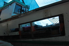 IMG_3933 - Port Hadlock WA - Northwest School of Wooden Boatbuilding - 2013 Repair and Restoration - HOBO - frame repair, port side aft (BlackShoe1) Tags: wood port boat washington olympicpeninsula wash pacificnorthwest wa jefferson woodenboat washingtonstate hobo woodboat boatrepair countyeast porthadlockwa boatwooden hobohobohobo hadlockjefferson countymv repairwood tugwoodtug
