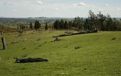 Ballyhooley, Frogmore NSW