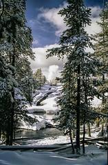 Yellowstone1981032a (L. Bradfish) Tags: winter snow 1981 yellowstonenationalpark yellowstone wyoming geyser