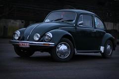 Mother's Bug (Pierre Monneret) Tags: green bug volkswagen citadel beetle mexican cox vwbug namur