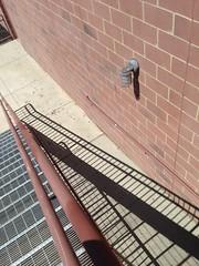 Cinemark Polaris 18 + Xtreme (dankeck) Tags: shadow stairs stairway fireescape polarisfashionplace