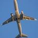 American Eagle Embraer EMB-175 RJ  takeoff   DSC_20178 - 1