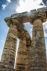 DSC_9126 (Dan Kistler) Tags: paestum italy velia greek ruins temples trains