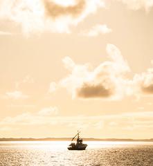 Langenuen (ohagerup) Tags: light yellow norway evening coast boat quiet strait langenuen