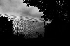 (formwandlah) Tags: city trees light sky urban bw white abstract black bird strange silhouette contrast fence dark blackwhite high noir darkness pentax outdoor silhouettes dramatic surreal wolken sw gr monochrom zaun sureal bume ricoh kaiserslautern vogel abstrakt stacheldraht thorsten prinz melancholic schrfentiefe bizarr skurril dster einfarbig finsternis minimalismus silhouetten melancholisch formwandlah