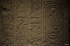 _WMP3057 OK (WM ) Tags: history egipto historia pasado faraones inframundo egiptologa