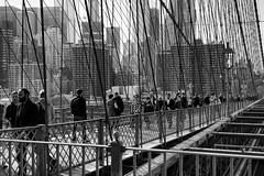 Walkway - Brooklyn Bridge. (minus6 (tuan)) Tags: mts minus6