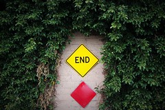 End (michaelelrod) Tags: street color wall photography still stop end conceptual