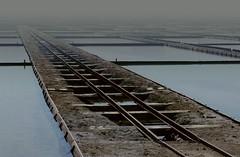andare (lauretta michelutti) Tags: acqua saline treno