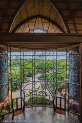 The Giant Window Onto the Savanna (Samantha Decker) Tags: orlando florida wideangle fl wdw waltdisneyworld hdr highdynamicrange uwa lakebuenavista disneysanimalkingdomlodge canonef1635mmf28liiusm canoneos6d samanthadecker