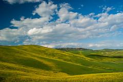 Val d'Orcia (Fulvio Varone) Tags: toscana tuscany valdorcia