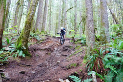 BikeRiding_Squamish_Downhill_KH (revolutionsports.eu) Tags: race northshore biking squamish mountainbikes framebuilder testofmetal allmountain carbonbikes konstructive
