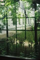 CNV000038 (wwhiteshore) Tags: city urban window glass architecture vegetation bucharest