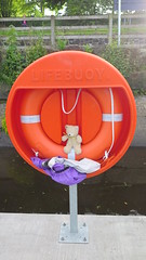 Stay Safe (Katie_Russell) Tags: ireland water river toy teddy bann teddybear northernireland ni camus ulster nireland norniron coleraine countylondonderry countyderry riverbann coderry colondonderry castleroe colderry countylderry