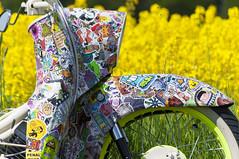 Simson Stickerbomb Schwalbe im Raps 2 (m_u_l_l_e) Tags: colour field yellow rape raps canola simson stickerbomb