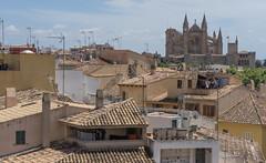 Catedral de Mallorca (Toto Kuo / I am Indie) Tags: mallorcacalastvicendei illesbalears espanyavalldemossaserradetramuntana espanyaesbaluardmuseudartmodernicontemporanidepalmacatedraldemallorca  mallorca cala st vicen   dei illes balears espanya valldemossa  serra de tramuntana  es baluard museu dart modern contemporani palma catedral