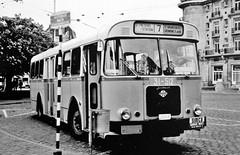 512 7 (brossel 8260) Tags: bus belgique gent gand mivg
