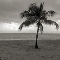 2016-05-31 18.35.51-1 (WoodysWorldTV) Tags: travel tourism tropical sanjuan puertorico territory