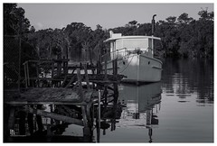Boat at the old timber jetties (pbaddz) Tags: blackandwhite bw water creek reflections boat australia brisbane calm queensland moretonbay wynnummanly