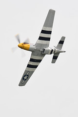 P-51D Mustang - Never Miss (albionphoto) Tags: usa reading kate pa b17 worldwarii mosquito corsair mustang fifi dday flyingfortress b29 superfortress maam dehavilland p51d