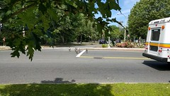 Yield (QuickTime clip) (rwchicago) Tags: film boston movie video traffic ducks clip fenway quicktime