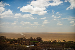 The long dusty road leading into Serengeti National Park (3scapePhotos) Tags: africa tanzania continent dusty landscape landscapes leading long national park road safari serengeti vast