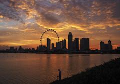 Golden Lights (elenaleong) Tags: reflections cityscape silhouettes goldensunset tgrhusunset