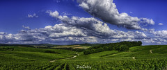 Avenay #2 (ZeGaby) Tags: france nature landscape vines champagne panoramic vineyards fr hdr mutigny pentaxk3 alsacechampagneardennelorraine alsacechampagneardennelorrain pentax355mmf24