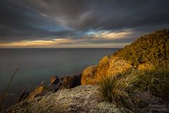 DSD_3297 (Dave Bosworth Photography) Tags: ocean australia tasmania wynyard davebosworth doctorsrocks d7200