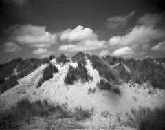 Dune by P&S (Mark Dries) Tags: wideangle wanderlust 150 4x5 rodinal 90mm largeformat schneiderkreuznach 100iso orangefilter fomapan 6890 angulon markguitarphoto markdries travelwide