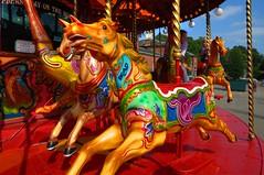 Tatton Races (Tony Shertila) Tags: england horse color colour race speed movement europe ride cheshire britain roundabout carousel merrygoround nationaltrust hdr tatton tattonpark mygearandme